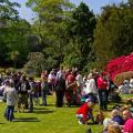 Летом открытые сады привлекают толпы желающих отдохнуть ...