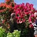 … и множество страстных любителей садоводства