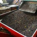 Сначала на маслодельне ягоды очищают от веток и листьев