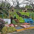 Классические сады и парки юга Китая 2016