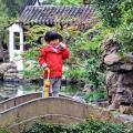 Сад Мастера Сетей (Wangshi Yuan)