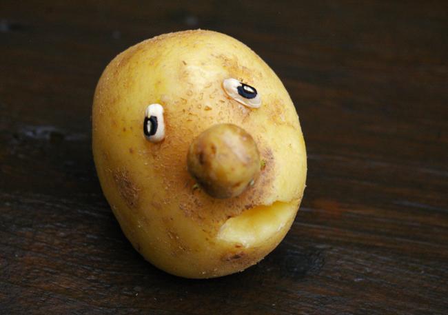 Картофель смешные картинки, год свиньи