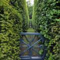 Зелёная стрела. Сад Сильверстоун Англия