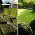 """Cobham. """"Ограниченная палитра растений - это самая сложная ситуация в садовом дизайне, но это даёт чистые линии и минималистический дизайн"""""""