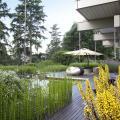 """Huf House Farnham. """"Связывание современного дома с уже устоявшимся садом со своими особыми видами требует насыщенного дизайна"""""""