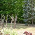 Ботанический сад в Торонто